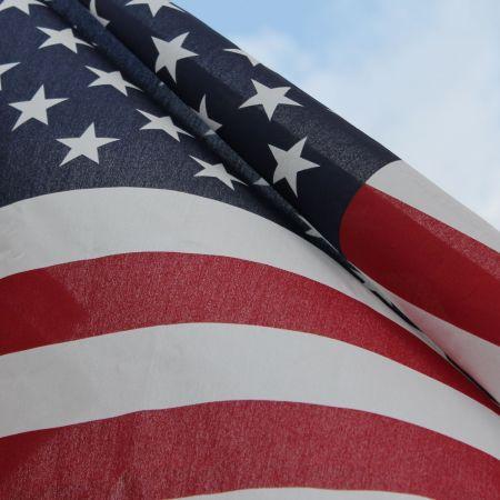 image of U.S. flag